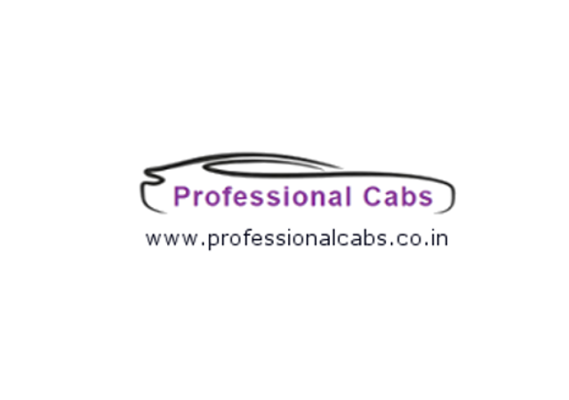 Professional Cabs logo