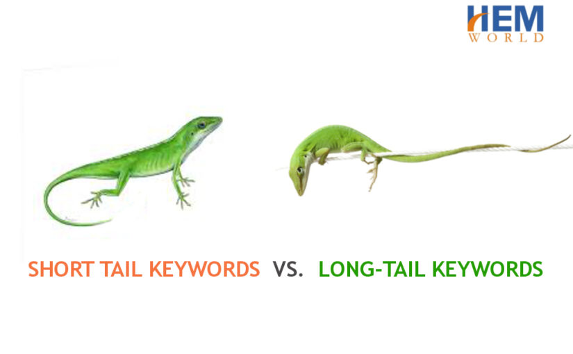 Short tail keywords vs. Long-tail keywords in Search Engine Optimization (SEO)- Comparative Analysis
